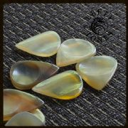 Lefty Tones - Clear Horn - 1 Guitar Pick | Timber Tones